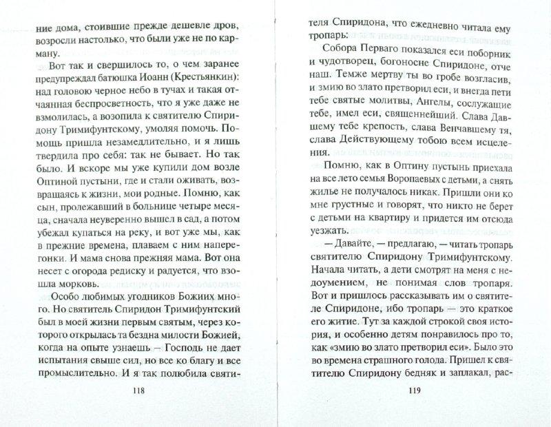 Иллюстрация 1 из 4 для Спиридон Тримифунтский. Поможет с жильем и в любых делах - И. Серова | Лабиринт - книги. Источник: Лабиринт