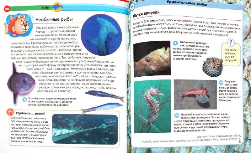Иллюстрация 1 из 19 для Море - Эмануэла Буза | Лабиринт - книги. Источник: Лабиринт