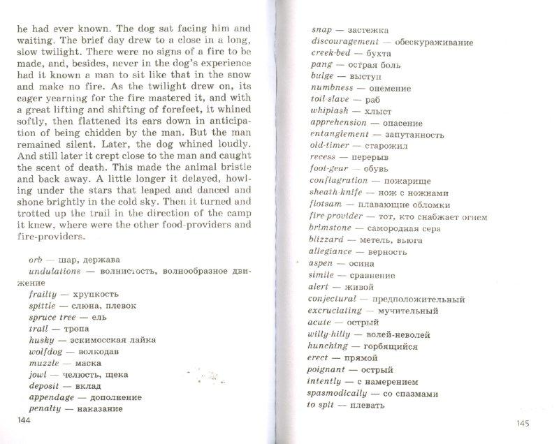 Иллюстрация 1 из 21 для Английский язык. Задания для домашнего чтения 9-10 годы обучения.10-11 класс - Ирина Гиндлина | Лабиринт - книги. Источник: Лабиринт