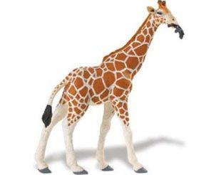 Иллюстрация 1 из 5 для Жираф пятнистый (268429) | Лабиринт - игрушки. Источник: Лабиринт