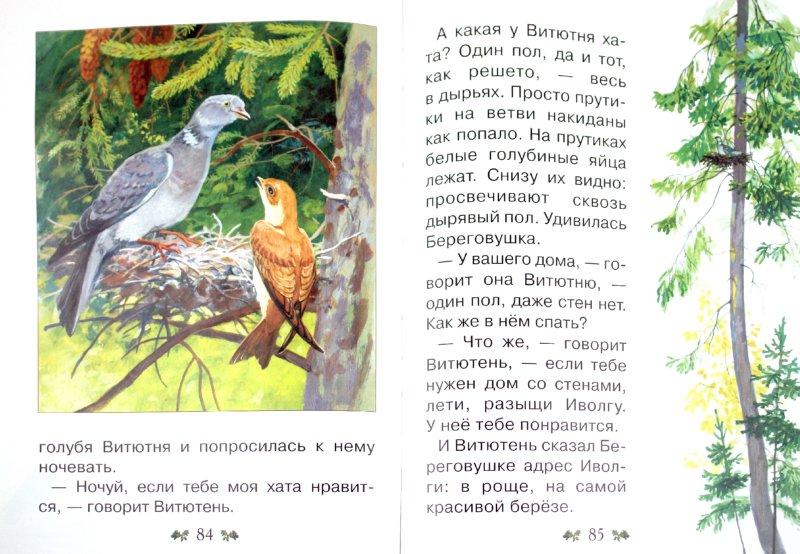 Иллюстрация 1 из 63 для Сказки и рассказы о животных - Виталий Бианки   Лабиринт - книги. Источник: Лабиринт