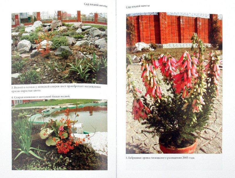 Иллюстрация 1 из 3 для Сад вашей мечты - Елена Астахова   Лабиринт - книги. Источник: Лабиринт