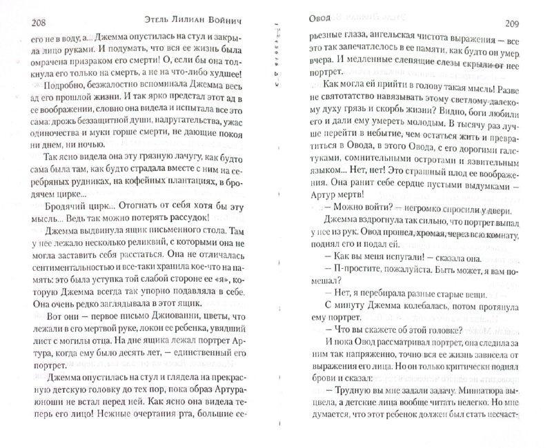 Иллюстрация 1 из 10 для Овод - Этель Войнич | Лабиринт - книги. Источник: Лабиринт