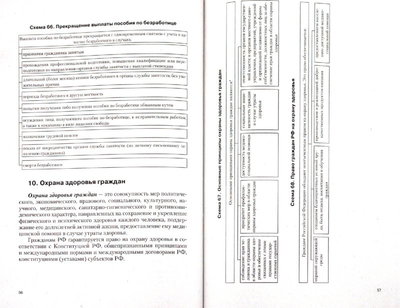 Иллюстрация 1 из 10 для Право социального обеспечения в схемах и определениях. Учебное пособие - Анастасия Кауфман   Лабиринт - книги. Источник: Лабиринт