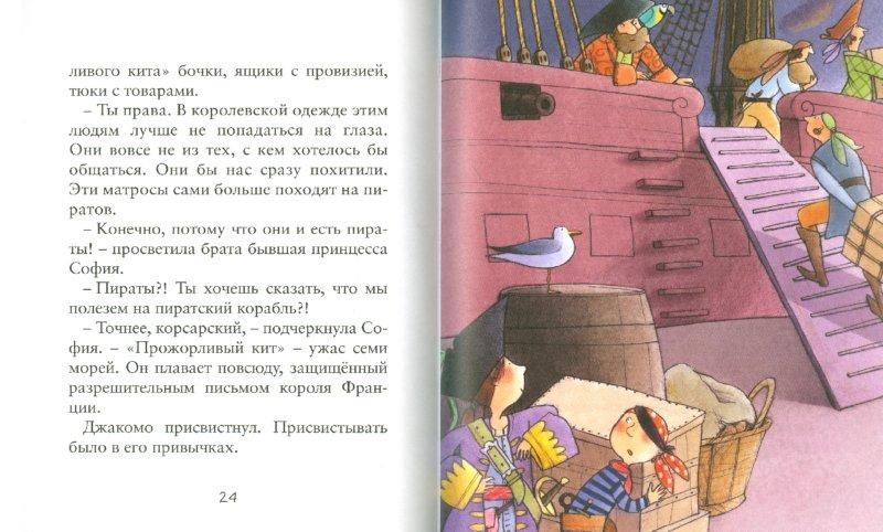 Иллюстрация 1 из 14 для Принцесса-пиратка - Ронкалья, Темпорин | Лабиринт - книги. Источник: Лабиринт