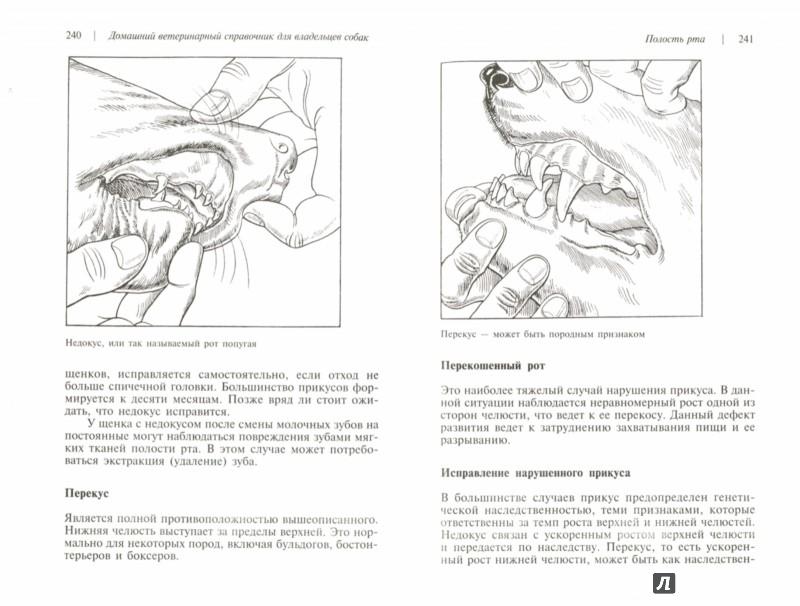 Иллюстрация 1 из 8 для Домашний ветеринарный справочник для владельцев собак - Карлсон, Гиффин   Лабиринт - книги. Источник: Лабиринт