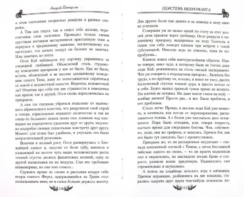 Иллюстрация 1 из 5 для Перстень некроманта - Андрей Петерсон   Лабиринт - книги. Источник: Лабиринт