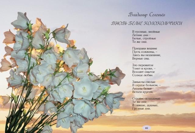 Иллюстрация 1 из 15 для Я подарю тебе цветы | Лабиринт - книги. Источник: Лабиринт