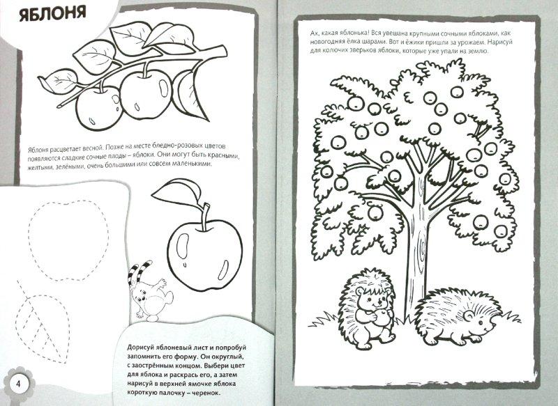 Иллюстрация 1 из 12 для Рисуем и раскрашиваем деревья и плоды   Лабиринт - книги. Источник: Лабиринт