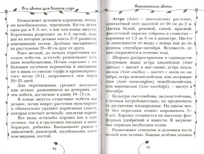 Иллюстрация 1 из 16 для Все цветы для вашего сада - Дарья Князева | Лабиринт - книги. Источник: Лабиринт