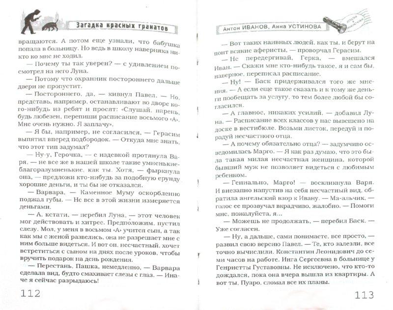 Иллюстрация 1 из 7 для Загадка красных гранатов - Иванов, Устинова | Лабиринт - книги. Источник: Лабиринт