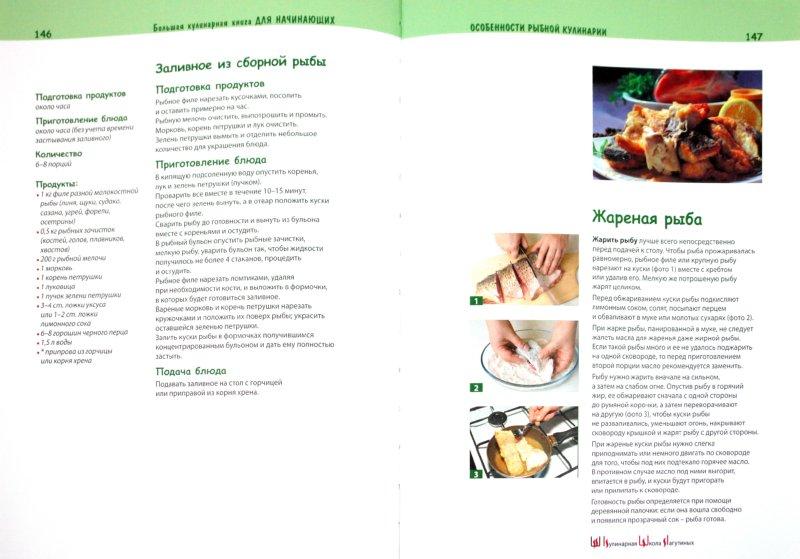 Иллюстрация 1 из 20 для Большая кулинарная книга для начинающих - Светлана Лагутина | Лабиринт - книги. Источник: Лабиринт