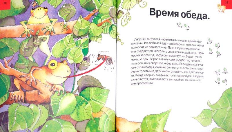Иллюстрация 1 из 7 для Твоя лягушка. Уход за домашним любимцем - Алехандро Альгарра | Лабиринт - книги. Источник: Лабиринт