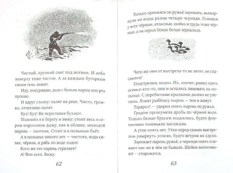 Иллюстрация 1 из 6 для Кошка Маруська - Евгений Чарушин | Лабиринт - книги. Источник: Лабиринт