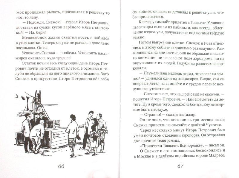 Иллюстрация 1 из 19 для Снежок - Сергей Баруздин | Лабиринт - книги. Источник: Лабиринт