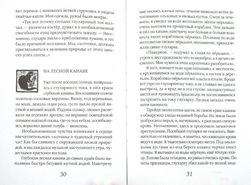 Иллюстрация 1 из 16 для Лесные рассказы - Иван Соколов-Микитов | Лабиринт - книги. Источник: Лабиринт