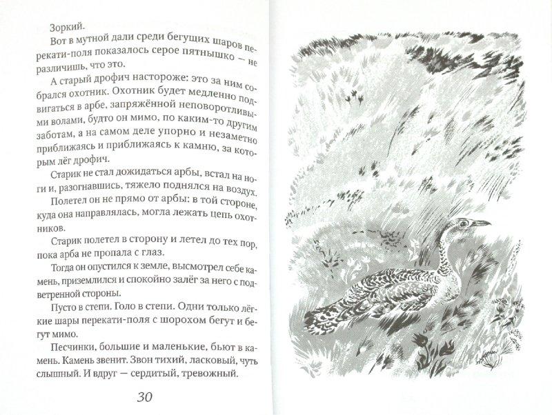 Иллюстрация 1 из 13 для Безымянной тропой - Николай Сладков   Лабиринт - книги. Источник: Лабиринт