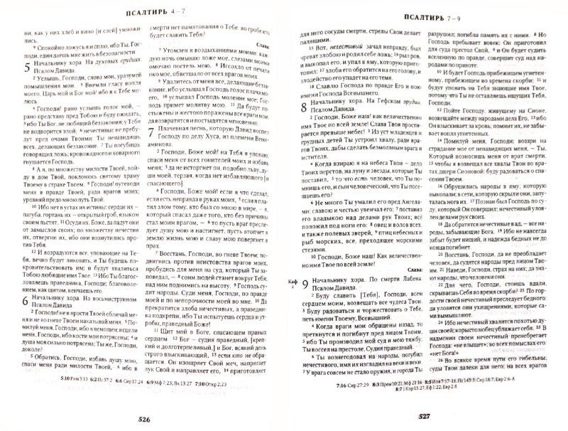 Иллюстрация 1 из 13 для Библия. Книги Священного Писания Ветхого и Нового Завета | Лабиринт - книги. Источник: Лабиринт