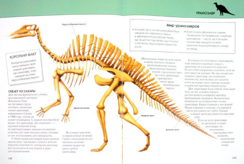 Иллюстрация 1 из 21 для Динозавры. Полная энциклопедия - Тамара Грин | Лабиринт - книги. Источник: Лабиринт