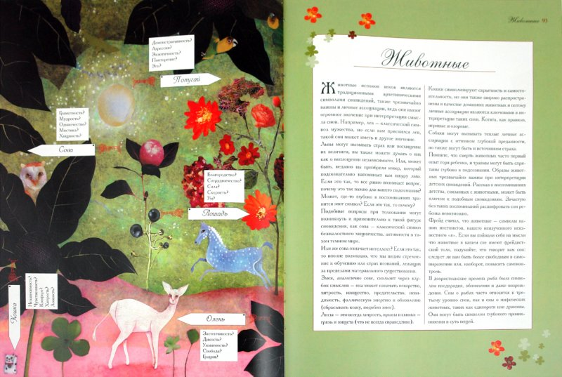 Иллюстрация 1 из 5 для Тайный язык сновидений: Ключ к загадкам подсознанания - Дэвид Фонтана | Лабиринт - книги. Источник: Лабиринт