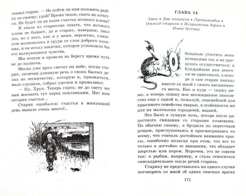 Иллюстрация 1 из 25 для Хруп. Воспоминания крысы-натуралиста - Александр Ященко | Лабиринт - книги. Источник: Лабиринт