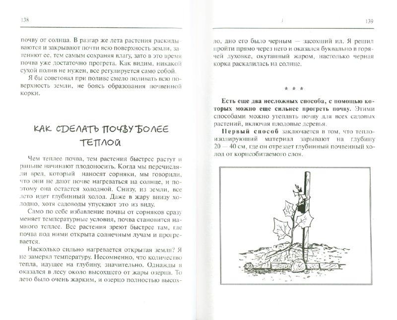 Иллюстрация 1 из 13 для Сад и огород для ленивых - Павел Траннуа | Лабиринт - книги. Источник: Лабиринт