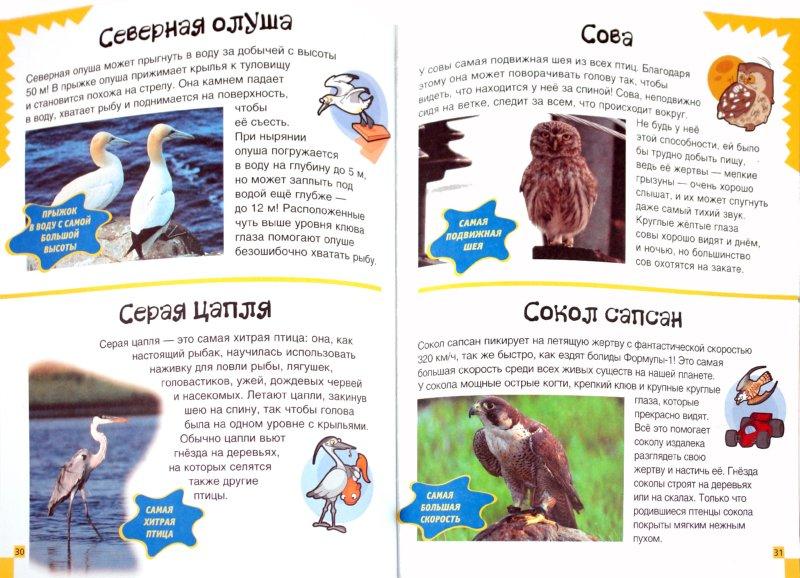Иллюстрация 1 из 12 для Животные. 150 удивительных фактов - Джулия Барталоцци | Лабиринт - книги. Источник: Лабиринт