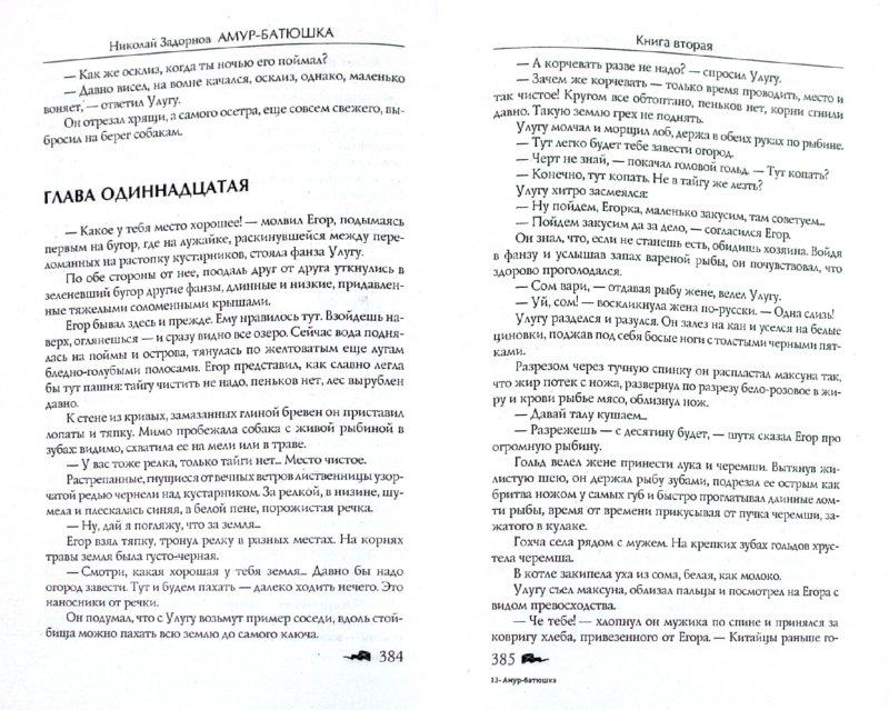 Иллюстрация 1 из 11 для Амур-батюшка - Николай Задорнов | Лабиринт - книги. Источник: Лабиринт