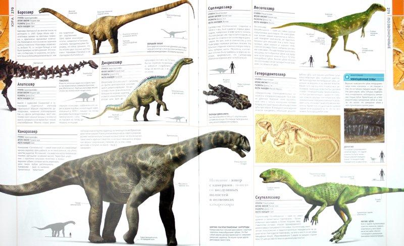 Иллюстрация 1 из 46 для Развитие жизни на земле | Лабиринт - книги. Источник: Лабиринт