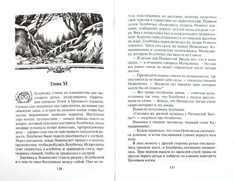 Иллюстрация 1 из 8 для Четвертый оруженосец - Эрин Хантер | Лабиринт - книги. Источник: Лабиринт