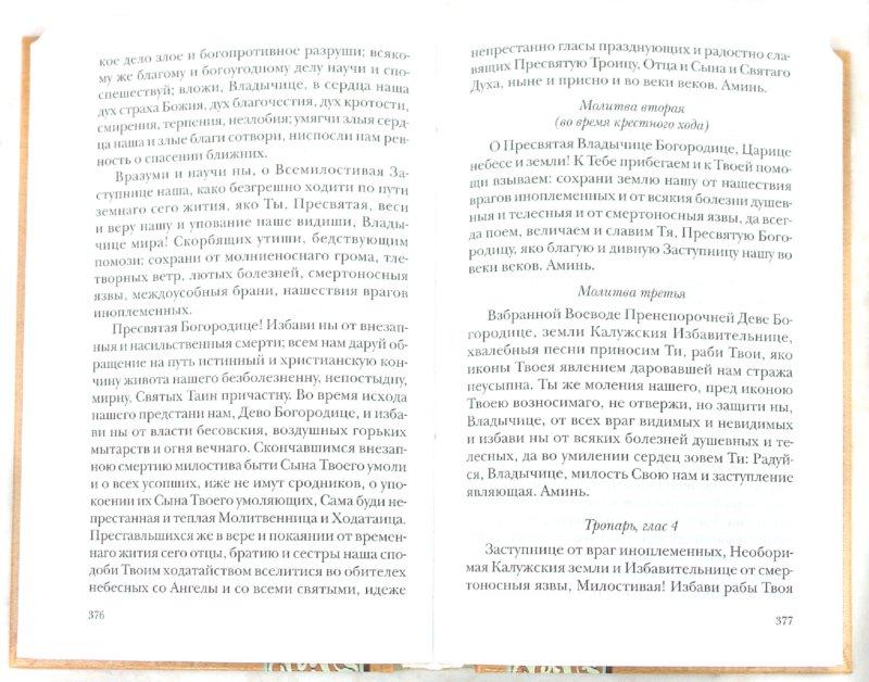 Иллюстрация 1 из 14 для Помощь Пресвятой Богородицы. Пред какой иконой Божией Матери в каких случаях принято молиться - Таисия Олейникова   Лабиринт - книги. Источник: Лабиринт