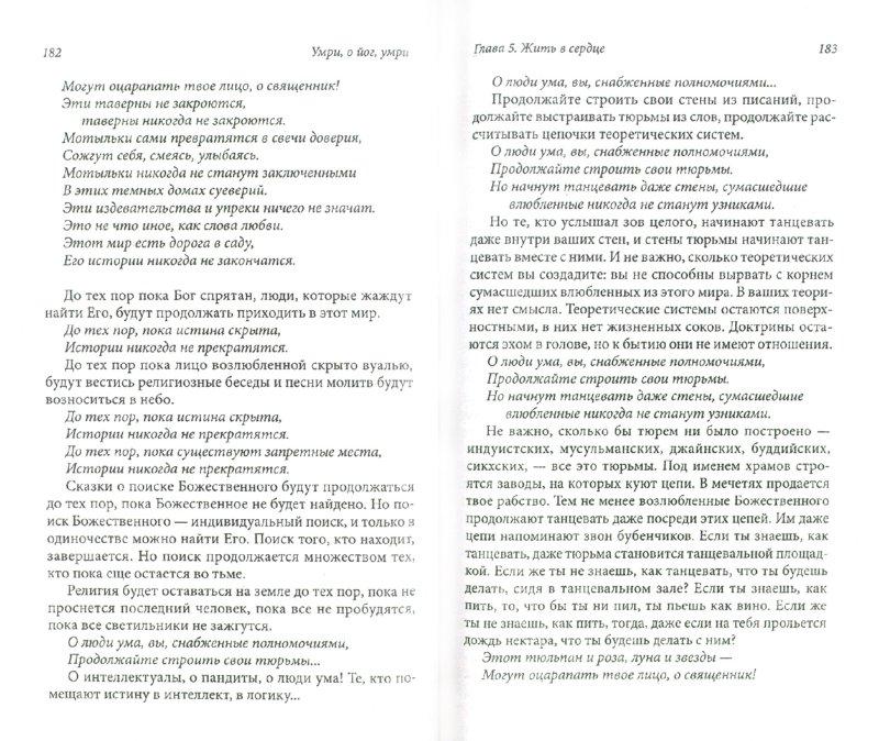 Иллюстрация 1 из 12 для Умри, о йог, умри. Постижение Высшей Истины - Ошо Багван Шри Раджниш | Лабиринт - книги. Источник: Лабиринт