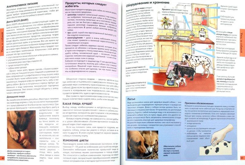Иллюстрация 1 из 26 для Все о собаках - Карен Буш | Лабиринт - книги. Источник: Лабиринт