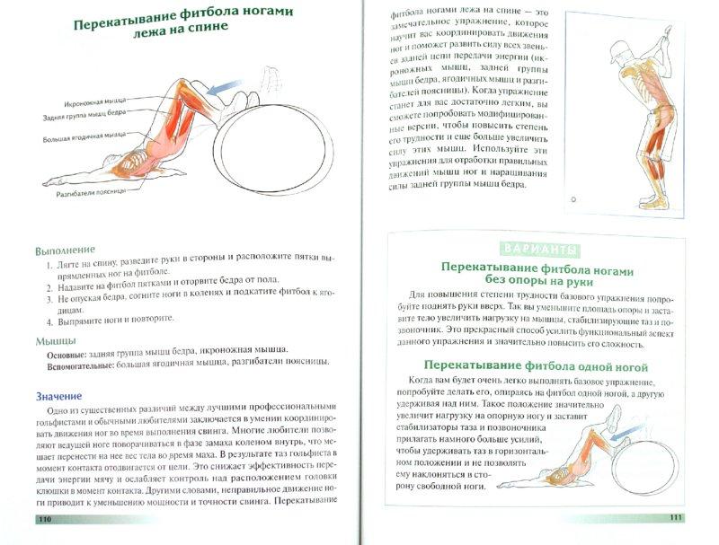 Иллюстрация 1 из 8 для Анатомия гольфа - Крейг, Винс   Лабиринт - книги. Источник: Лабиринт