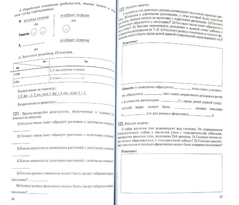Иллюстрация 1 из 31 для Биология. Введение в общую биологию. 9 класс. Рабочая тетрадь - Пасечник, Швецов | Лабиринт - книги. Источник: Лабиринт