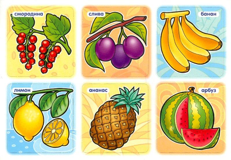 """Иллюстрация 1 из 5 для Развивающее лото """"Овощи, фрукты"""" (05261)   Лабиринт - игрушки. Источник: Лабиринт"""