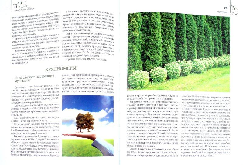 Иллюстрация 1 из 12 для Газон, живая изгородь, дорожки на садовом участке - Анастасия Скворцова   Лабиринт - книги. Источник: Лабиринт