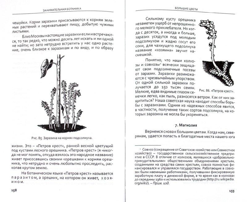 Иллюстрация 1 из 5 для Занимательная ботаника - Александр Цингер   Лабиринт - книги. Источник: Лабиринт