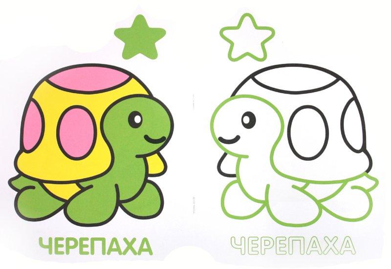 Иллюстрация 1 из 13 для Коллекция малыша. Черепаха | Лабиринт - книги. Источник: Лабиринт