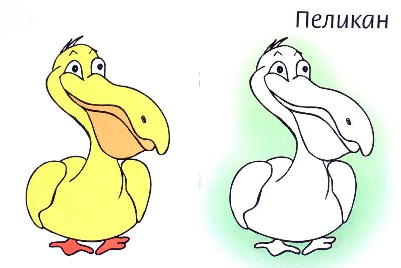 Иллюстрация 1 из 6 для Раскраска. Птицы - Мила Бегоза | Лабиринт - книги. Источник: Лабиринт