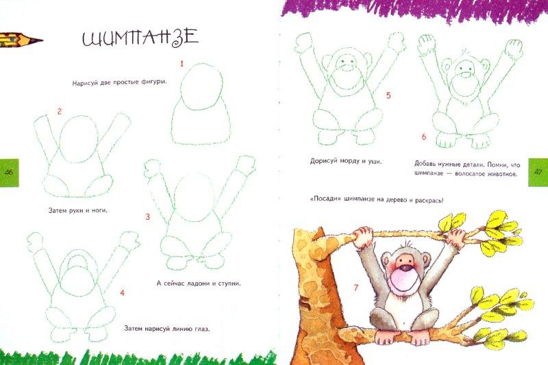 Иллюстрация 1 из 6 для Учимся рисовать (животные, растения, люди) - Курто Роза  Мария   Лабиринт - книги. Источник: Лабиринт