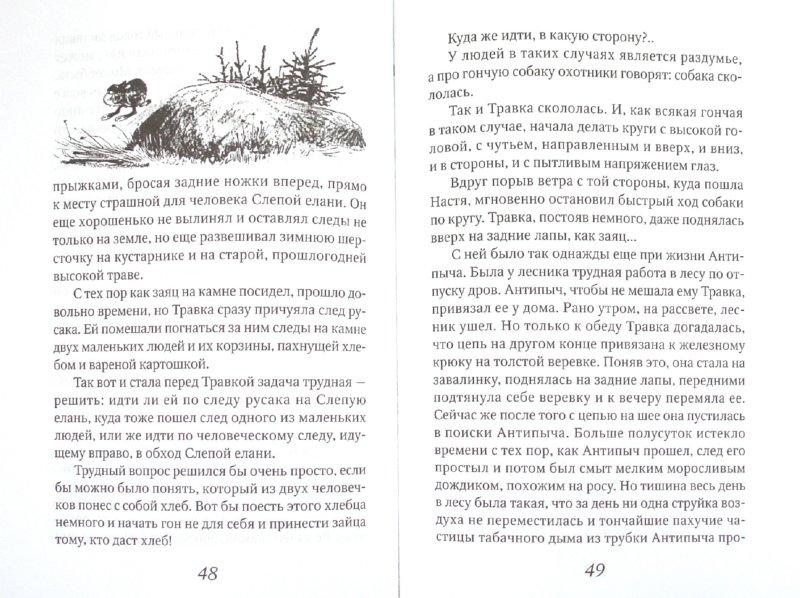 Иллюстрация 1 из 8 для Кладовая солнца. Сказка-быль - Михаил Пришвин   Лабиринт - книги. Источник: Лабиринт