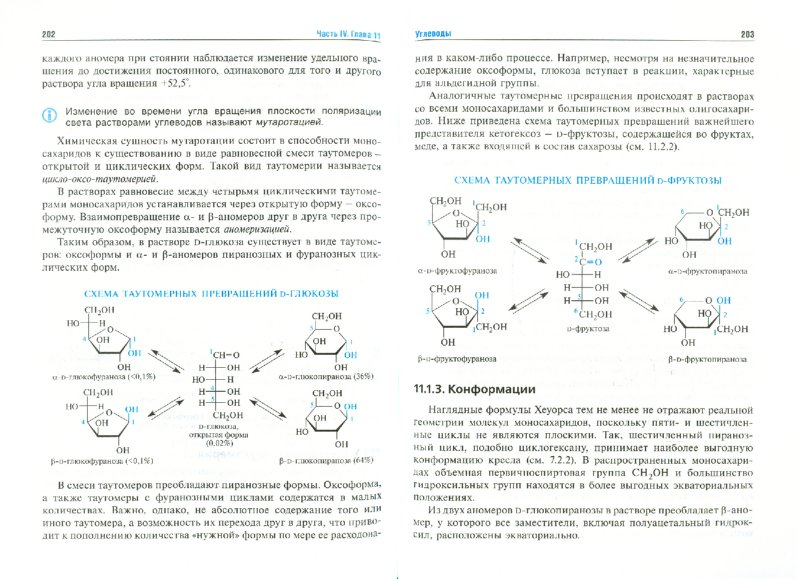 Иллюстрация 1 из 7 для Биоорганическая химия. Учебник - Зурабян, Бауков, Тюкавкина   Лабиринт - книги. Источник: Лабиринт