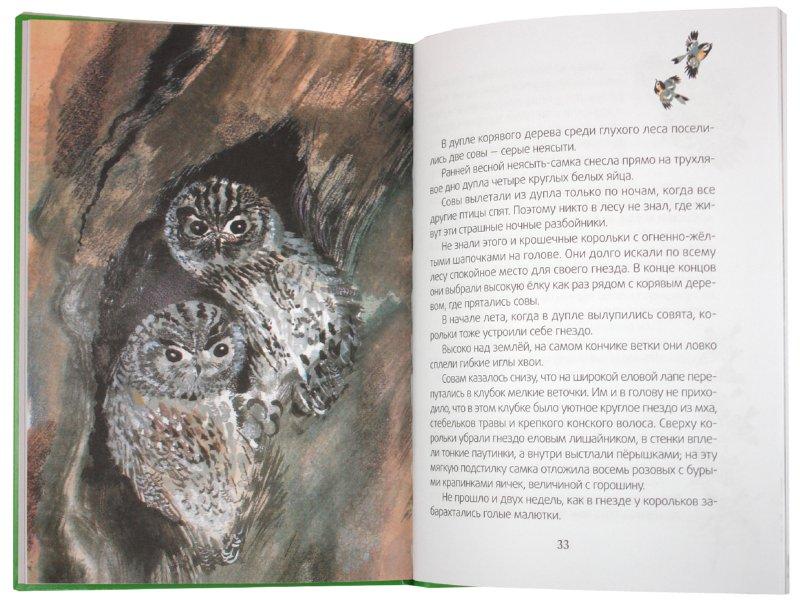 Иллюстрация 1 из 19 для Лесные домишки: сказки - Виталий Бианки | Лабиринт - книги. Источник: Лабиринт