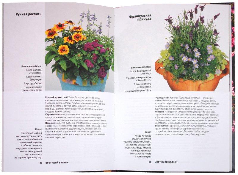 Иллюстрация 1 из 3 для Цветущий балкон | Лабиринт - книги. Источник: Лабиринт