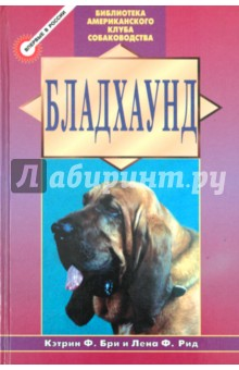 Бладхаунд купить щенка пегой гончей москва