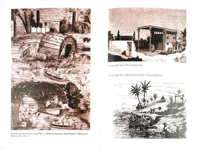 Иллюстрация 1 из 20 для Повседневная жизнь Египта во времена Клеопатры - Мишель Шово | Лабиринт - книги. Источник: Лабиринт