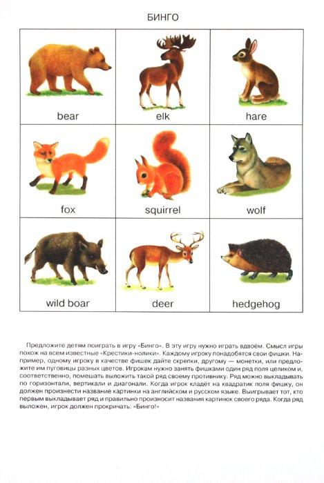 """Иллюстрация 1 из 18 для Дидактический материал """"Познаём окружающий мир"""". """"Лесные животные"""" - Д. Куликовский   Лабиринт - книги. Источник: Лабиринт"""