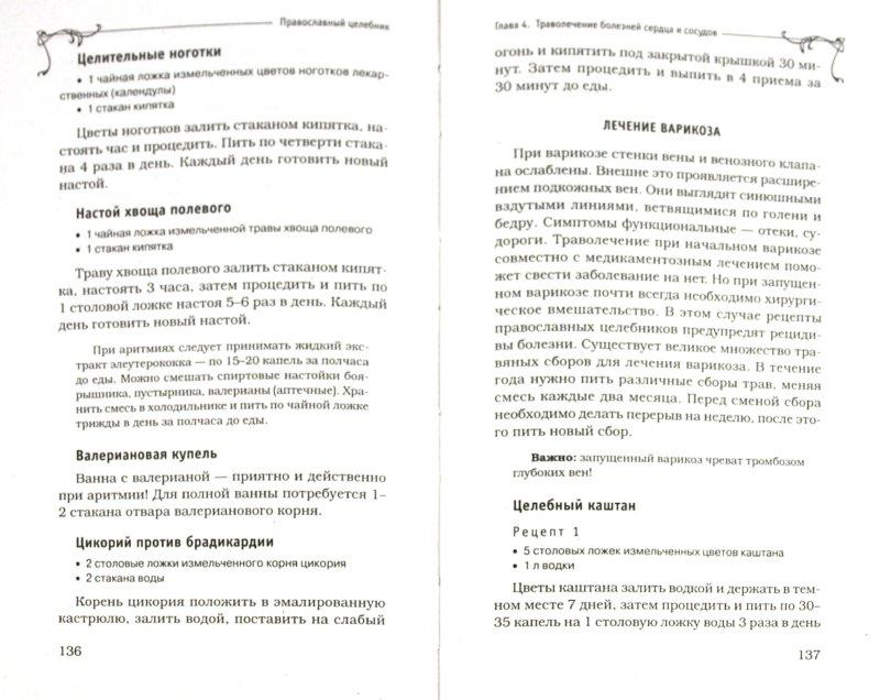 Иллюстрация 1 из 25 для Лекарственные растения. Православный целебник - Татьяна Литвинова   Лабиринт - книги. Источник: Лабиринт