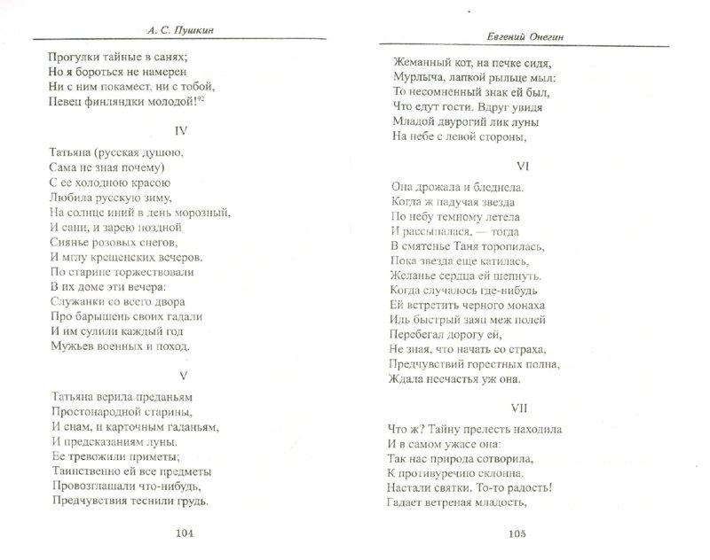 Иллюстрация 1 из 20 для Евгений Онегин - Александр Пушкин | Лабиринт - книги. Источник: Лабиринт